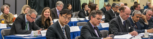 Observer delegations during Arctic Council meetings.